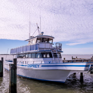 Osprey Cruises professional staff
